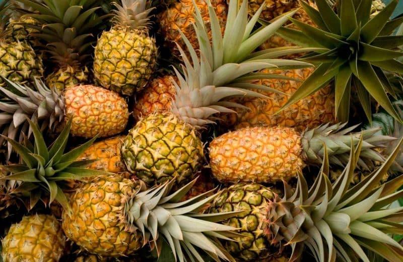 L'ananas dans tous ses états !