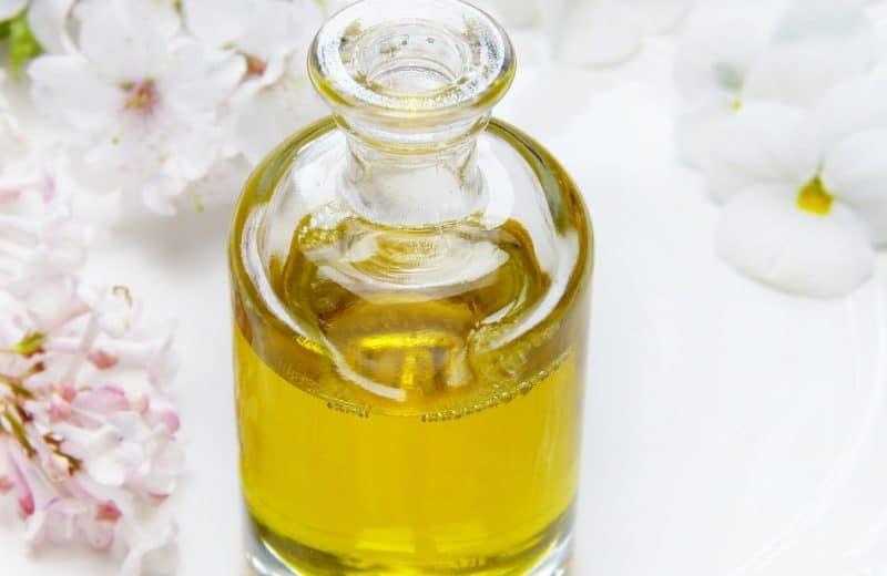 Des plantes riches en huile vous réservent des surprises