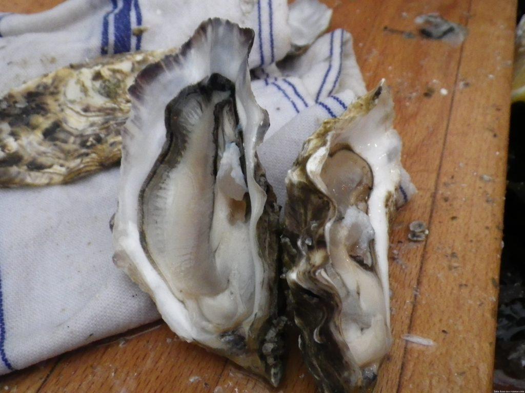 Quel accessoire pour ouvrir facilement des huîtres ?