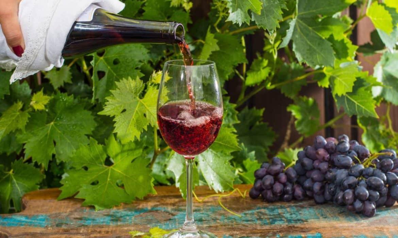 Le vin de Loire rouge : particularités et principaux crus